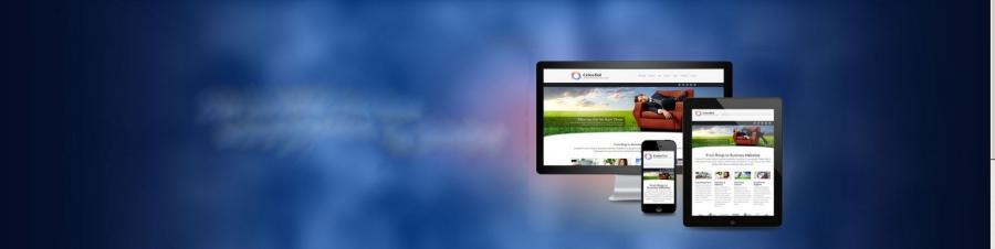 Web Advertising Videos